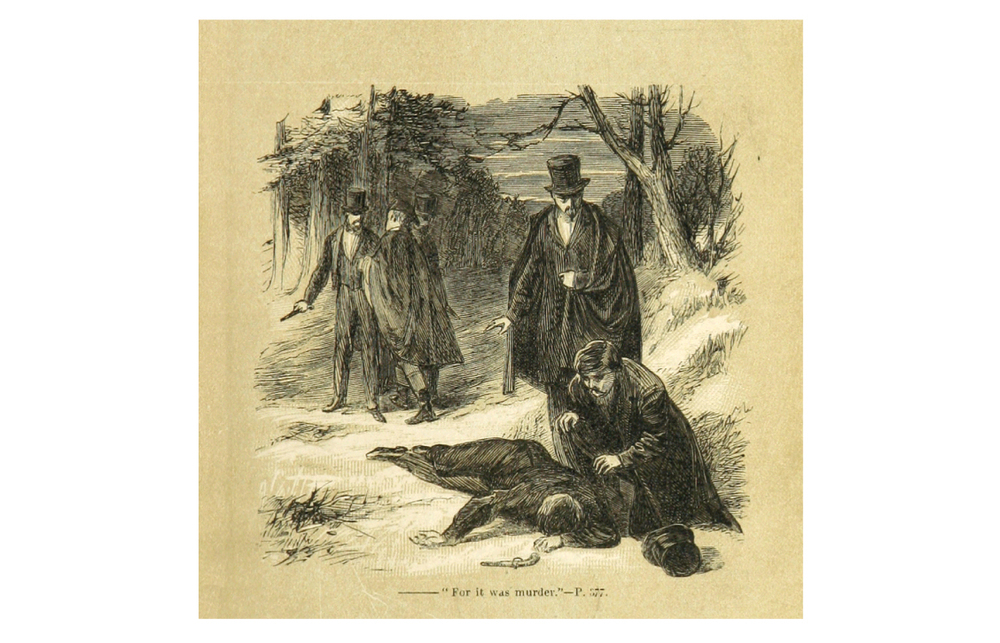 Image taken from 'The Baddington Peerage: who won, and who wore it.  A story of the best and worst society.'  Author: George Augustus Henry Fairfield Sala.  1865