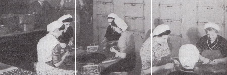 PELATURA DELLE CASTAGNE. CIRCA 1960