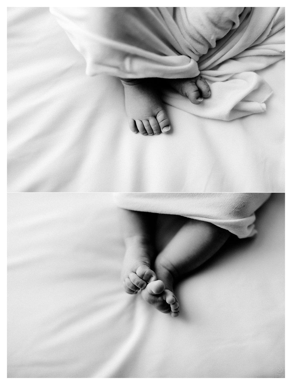 Newborn Photography Portland Oregon Sommessa_1161.jpg