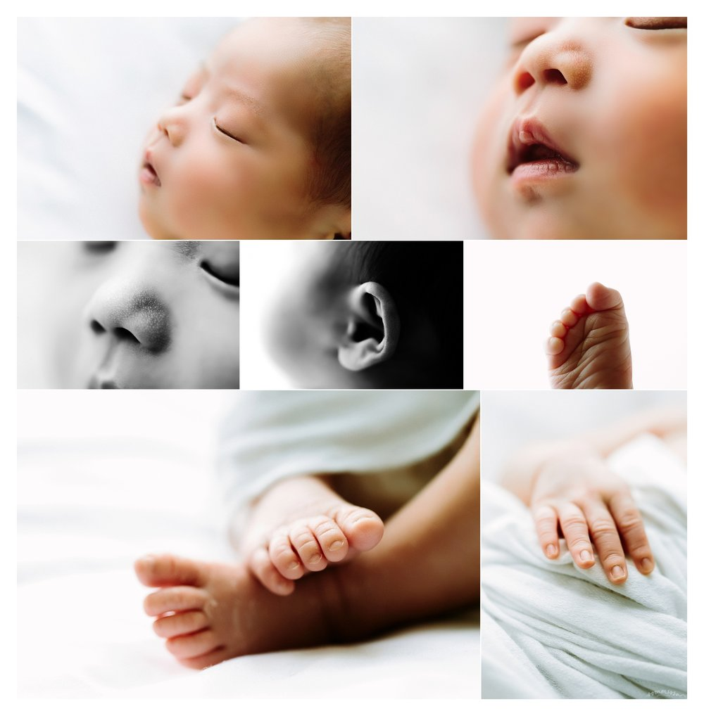 Newborn Photography Portland Oregon Sommessa_1317.jpg