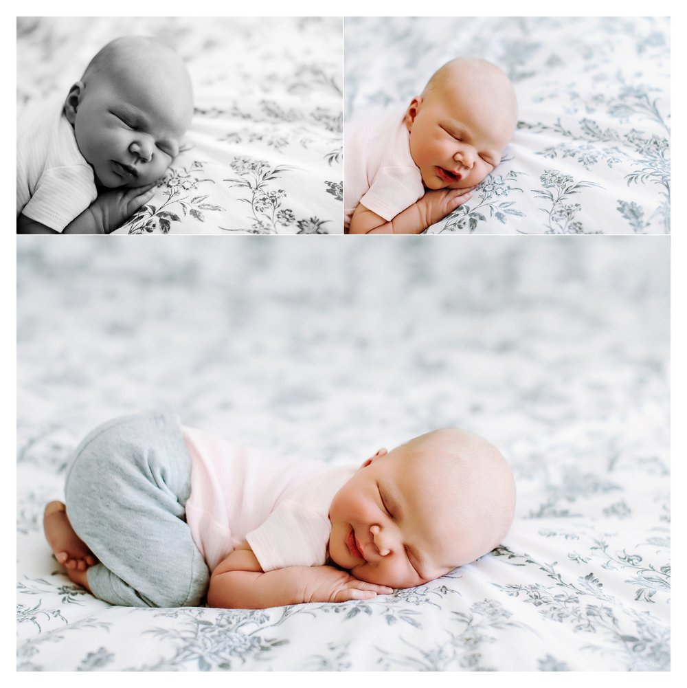 Newborn Photography Portland Oregon Sommessa_1338.jpg