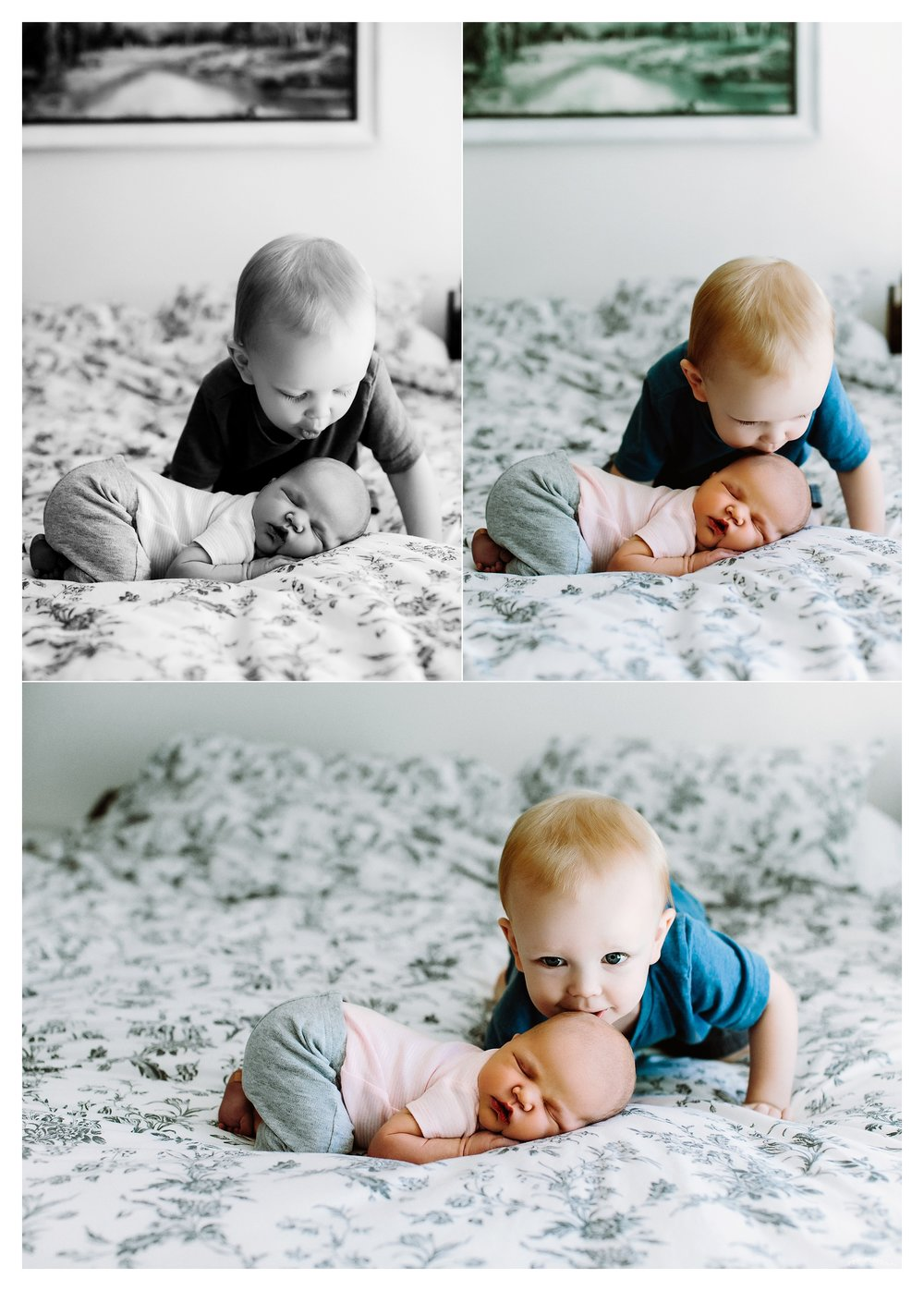 Newborn Photography Portland Oregon Sommessa_1340.jpg