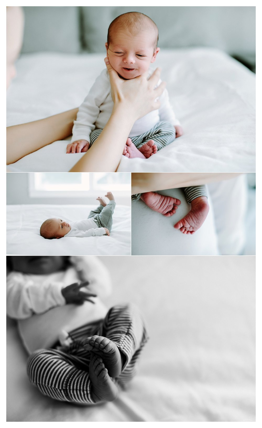 Newborn Photography Portland Oregon Sommessa_1470.jpg