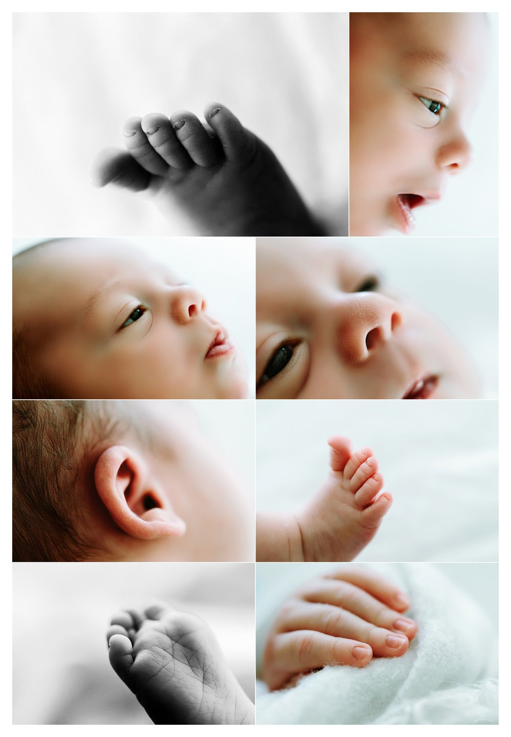 Newborn Photography Portland Oregon Sommessa_1473.jpg
