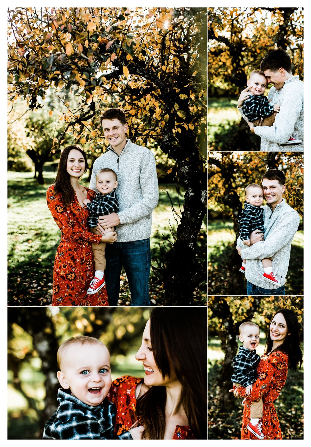 Family Photography Portland Oregon Sommessa_1502.jpg