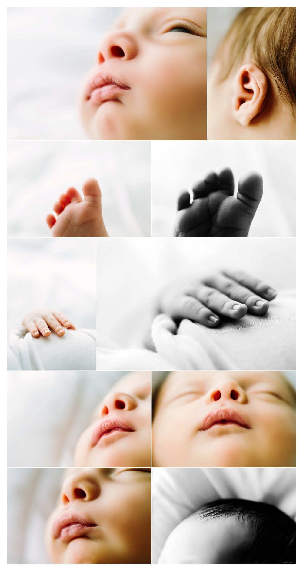 Newborn Photography Portland Oregon Sommessa_1530.jpg
