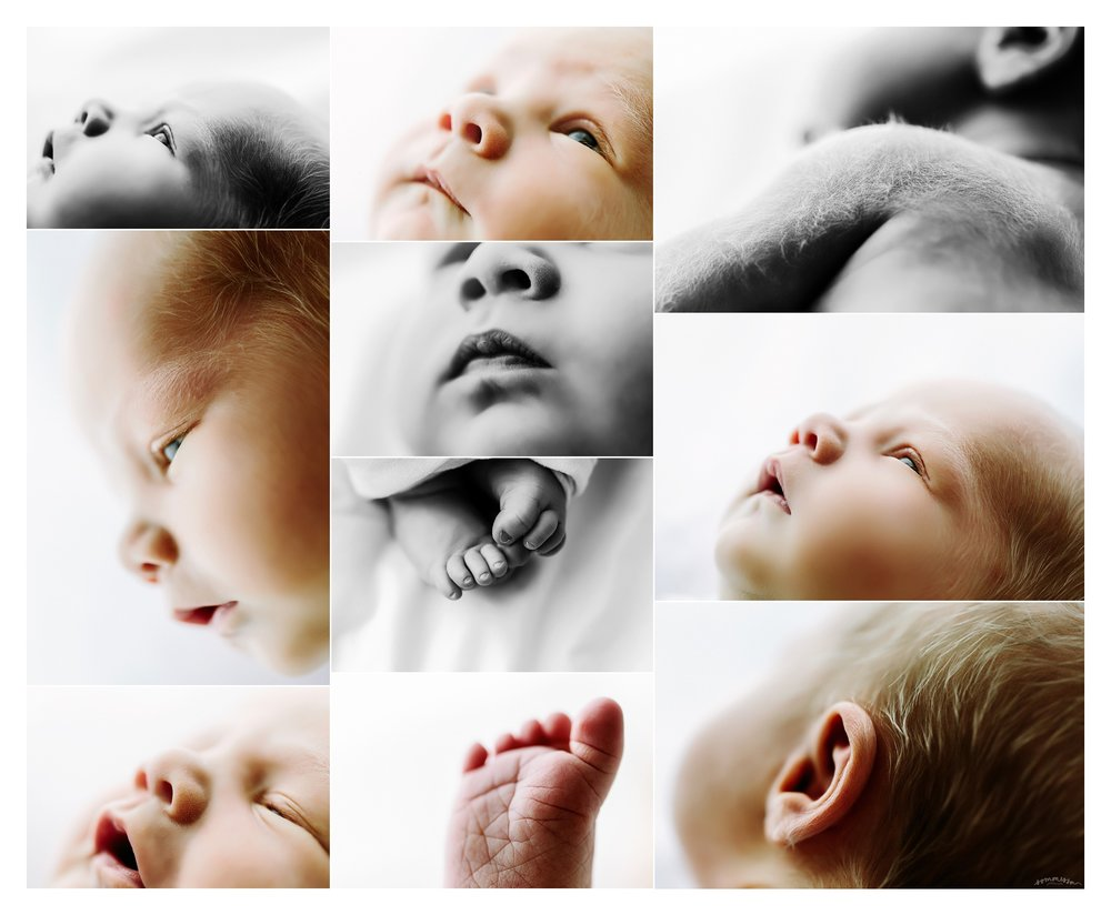 Newborn Photography Portland Oregon Sommessa_1559.jpg