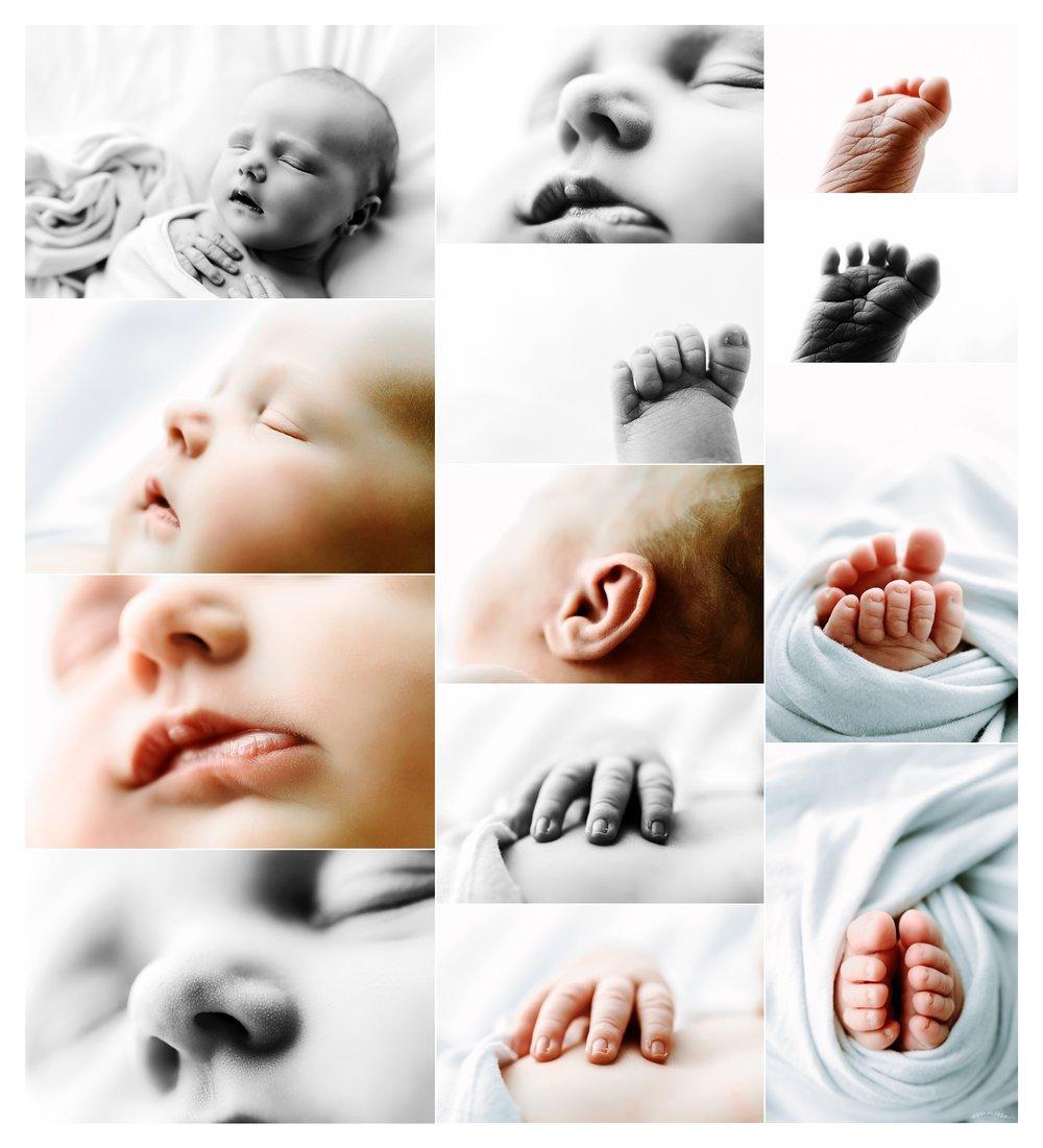 Baby Photography Portland Oregon Sommessa_1606.jpg