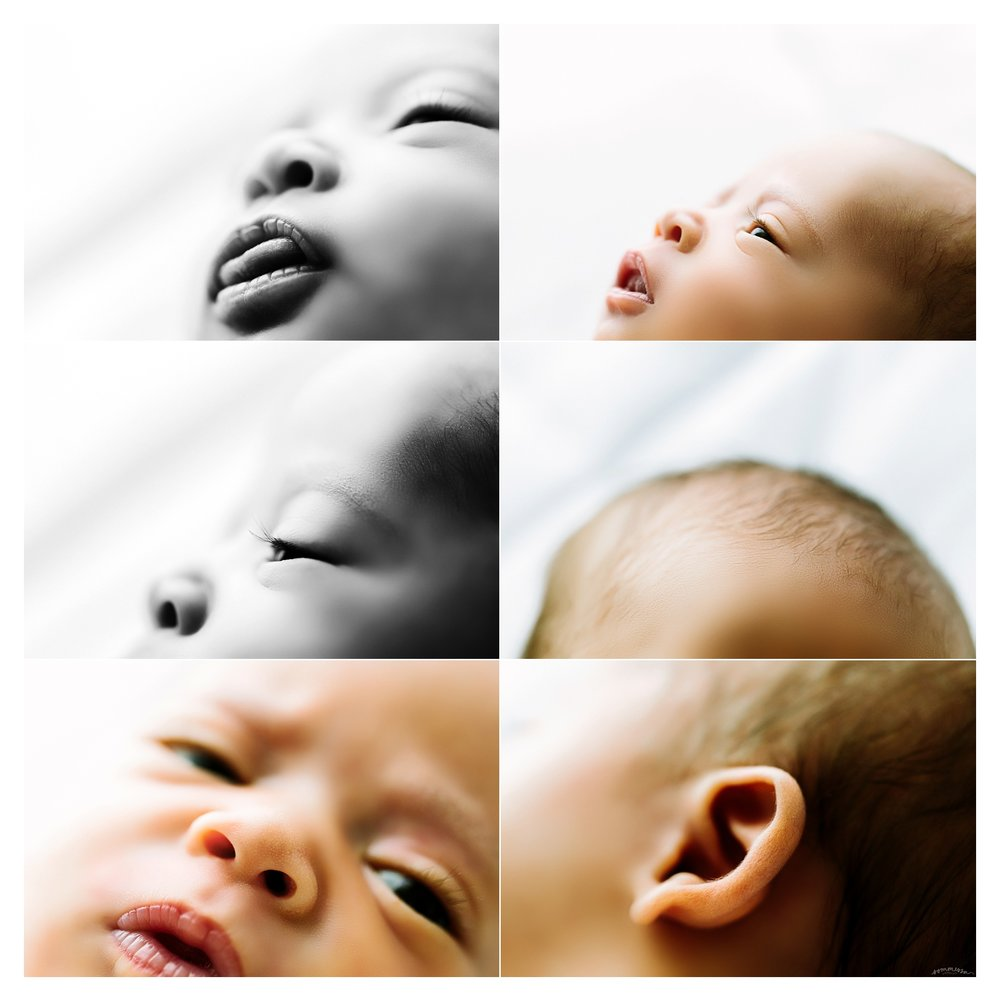 Newborn Photography Portland Oregon Sommessa_1619.jpg