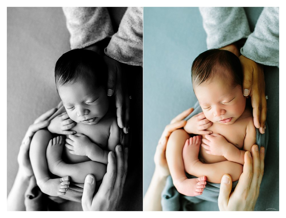 Newborn Photography Portland Oregon Sommessa_1705.jpg