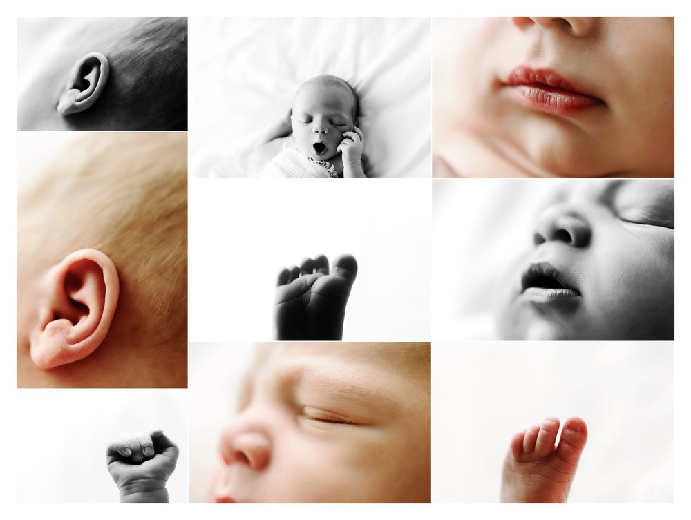 Newborn Baby Photography Portland Oregon Sommessa_1765.jpg