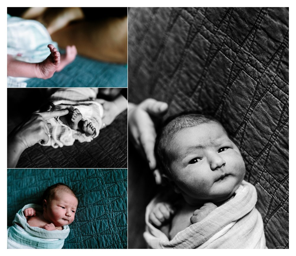 Newborn Baby Photography Portland Oregon Sommessa_1779.jpg