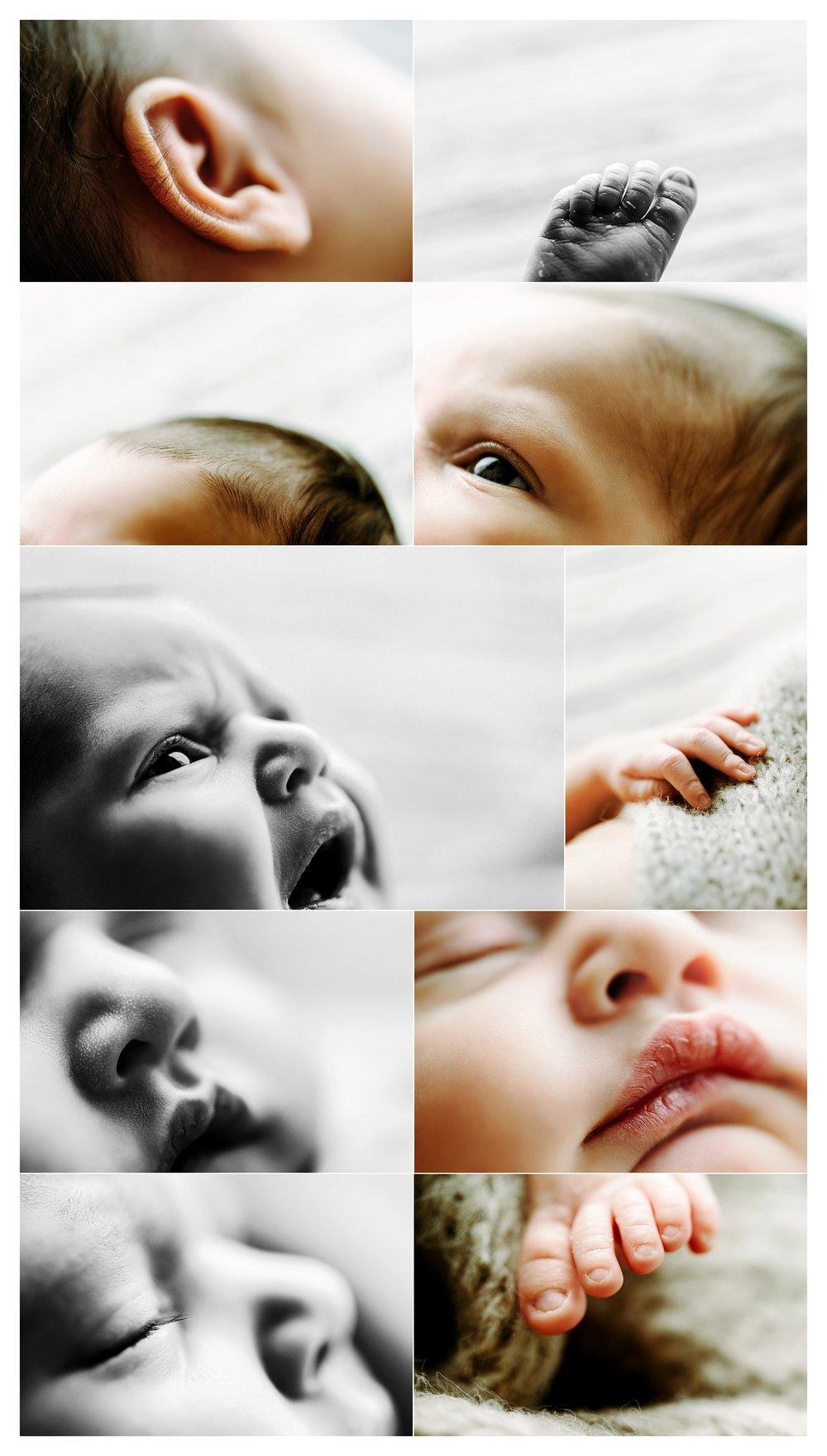 Newborn Photography Portland Oregon Sommessa_1793.jpg