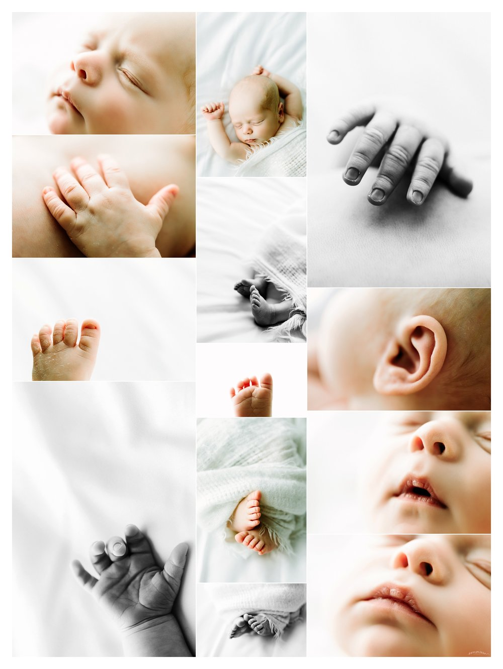 Newborn Baby Photography Portland Oregon Sommessa_1807.jpg