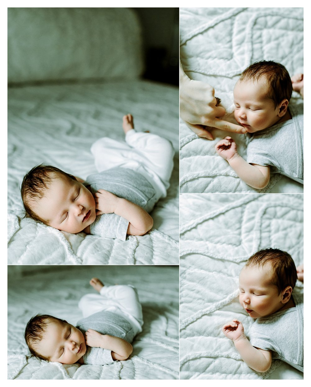 Newborn Photography Portland Oregon Sommessa_1886.jpg