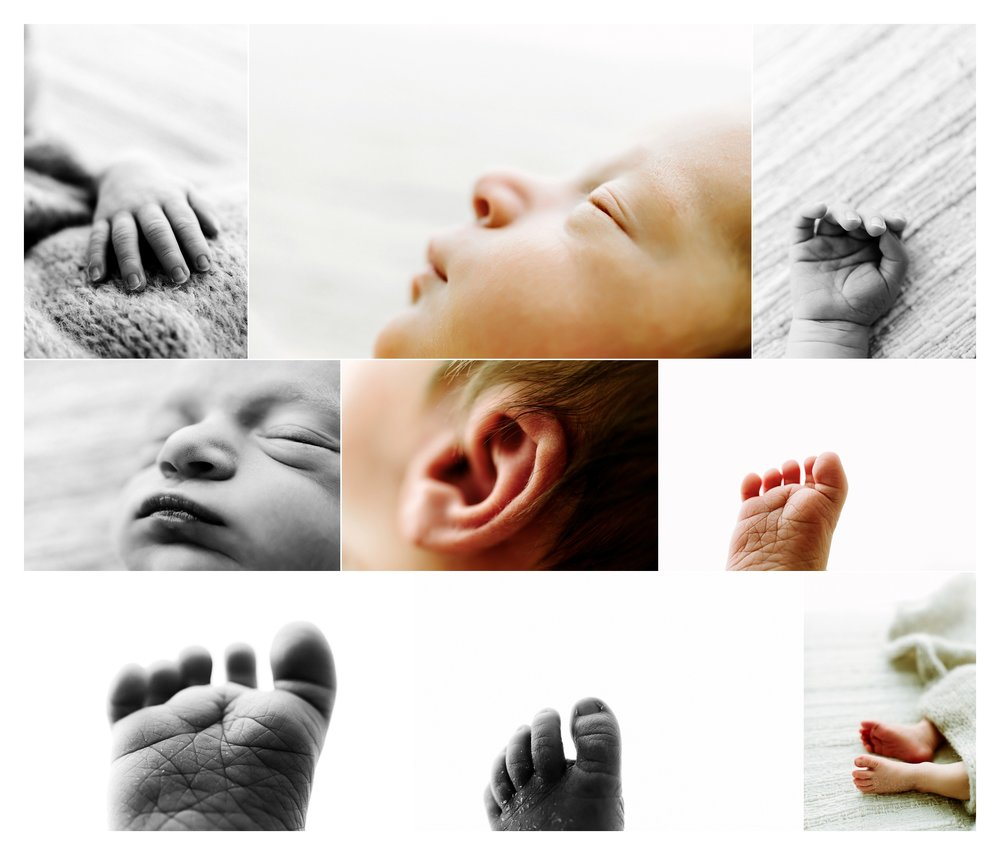 Newborn Photography Portland Oregon Sommessa_1975.jpg