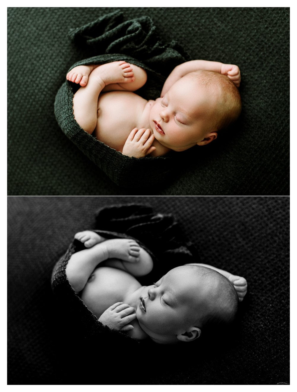 Newborn Baby Photography Portland Oregon Sommessa_2032.jpg
