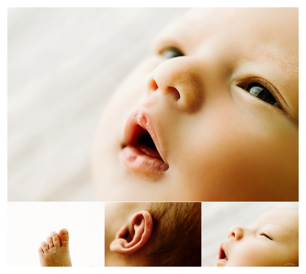 Portland Oregon Newborn Photography Sommessa_2246.jpg