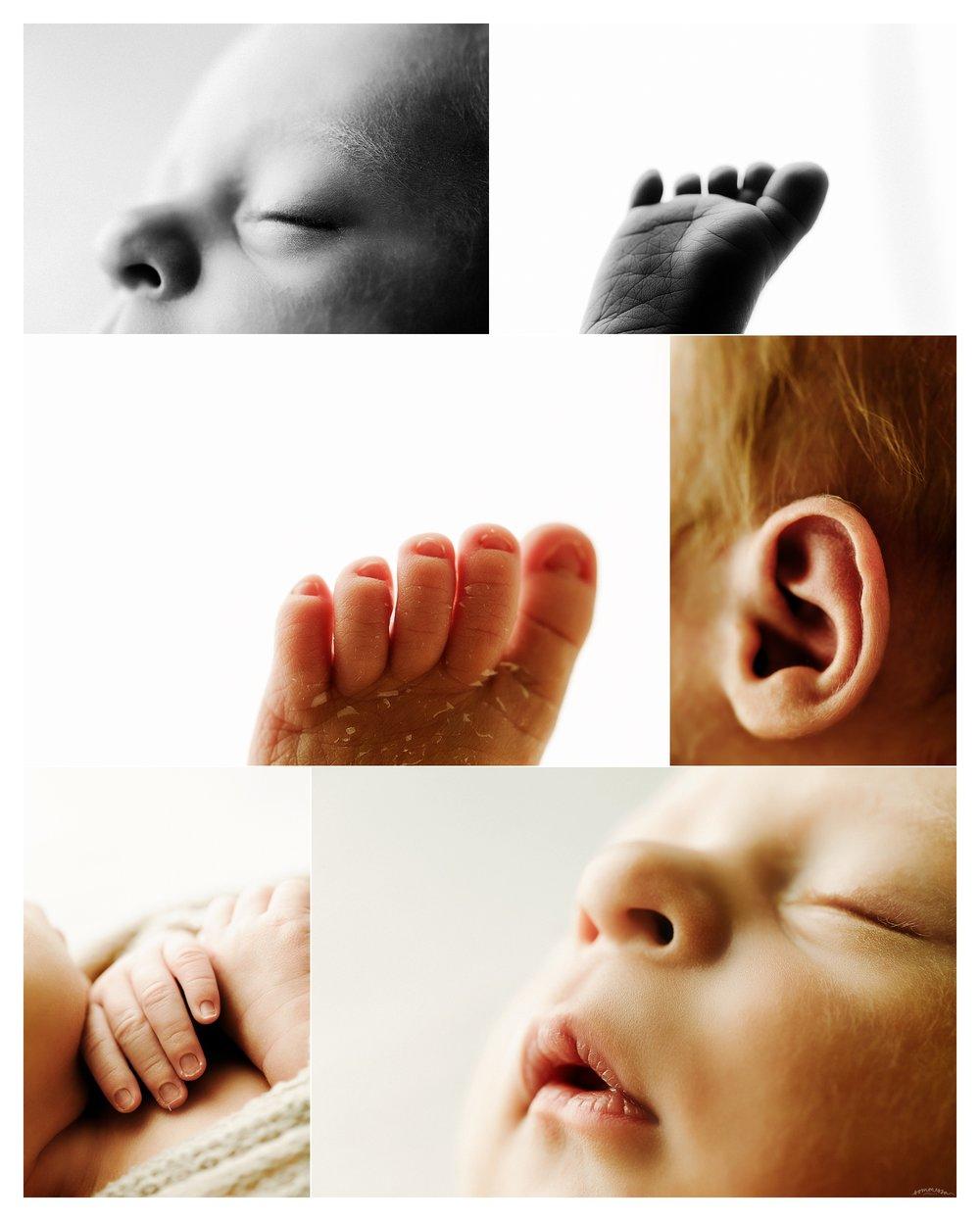 Portland Oregon Newborn Photographer Sommessa_2509.jpg