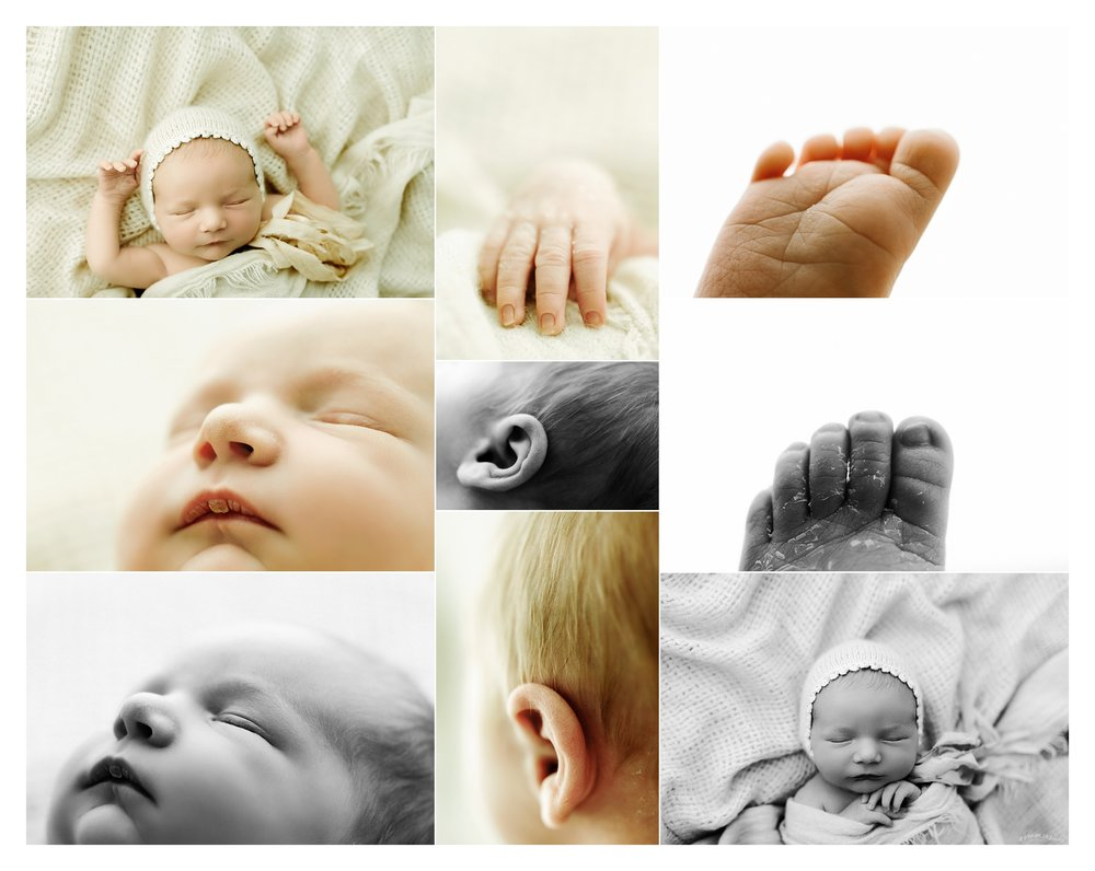 Newborn Photographer Portland, Oregon Sommessa_2634.jpg