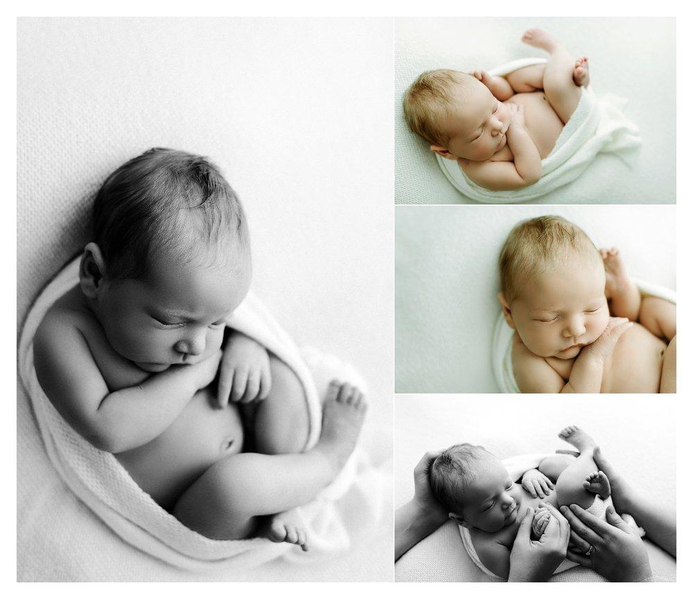 Newborn Photographer Portland, Oregon Sommessa_2638.jpg