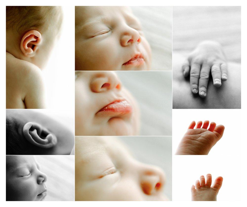 Newborn Photography in Portland, Oregon Sommessa_2766.jpg