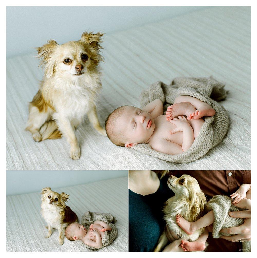 Newborn Photography in Portland, Oregon Sommessa_2772.jpg