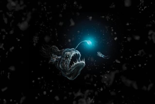 DeepSeaAnglerfishPredation-preview.jpg