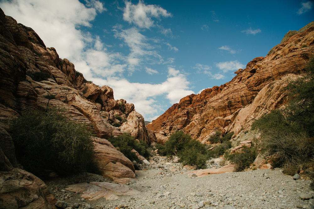 canyon web.jpg