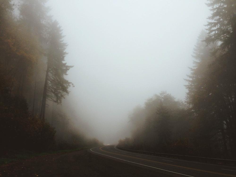 fog road 1500.jpg