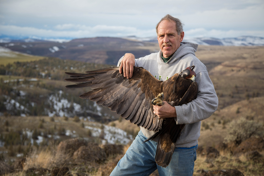 My dad Rick Gerhardt with an Adult Male Golden Eagle