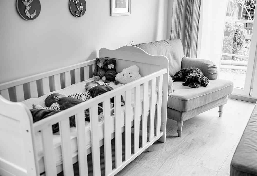 baby-fotoshooting-drillinge