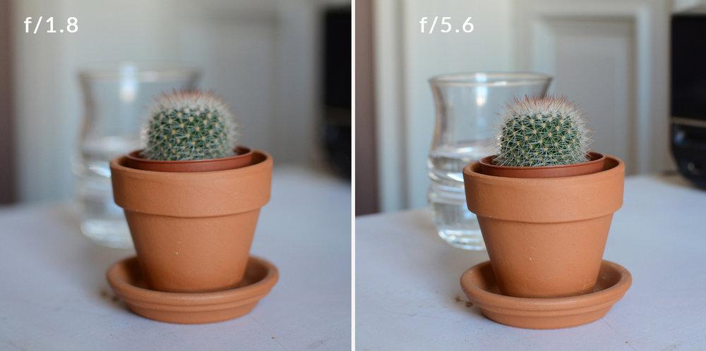 kleine-blende-große-blende--vergleich-fototipps