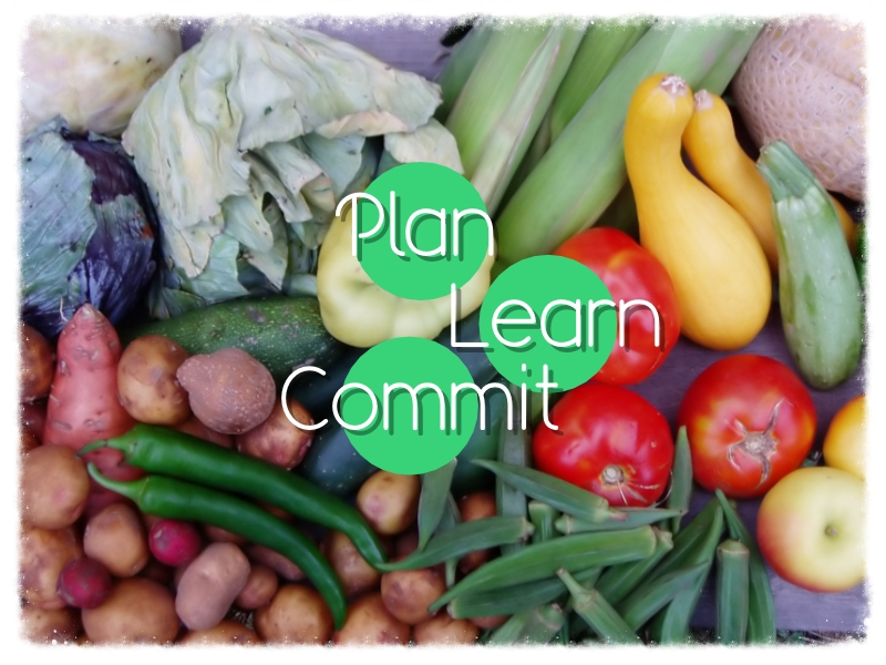 Plan Learn Commit.png