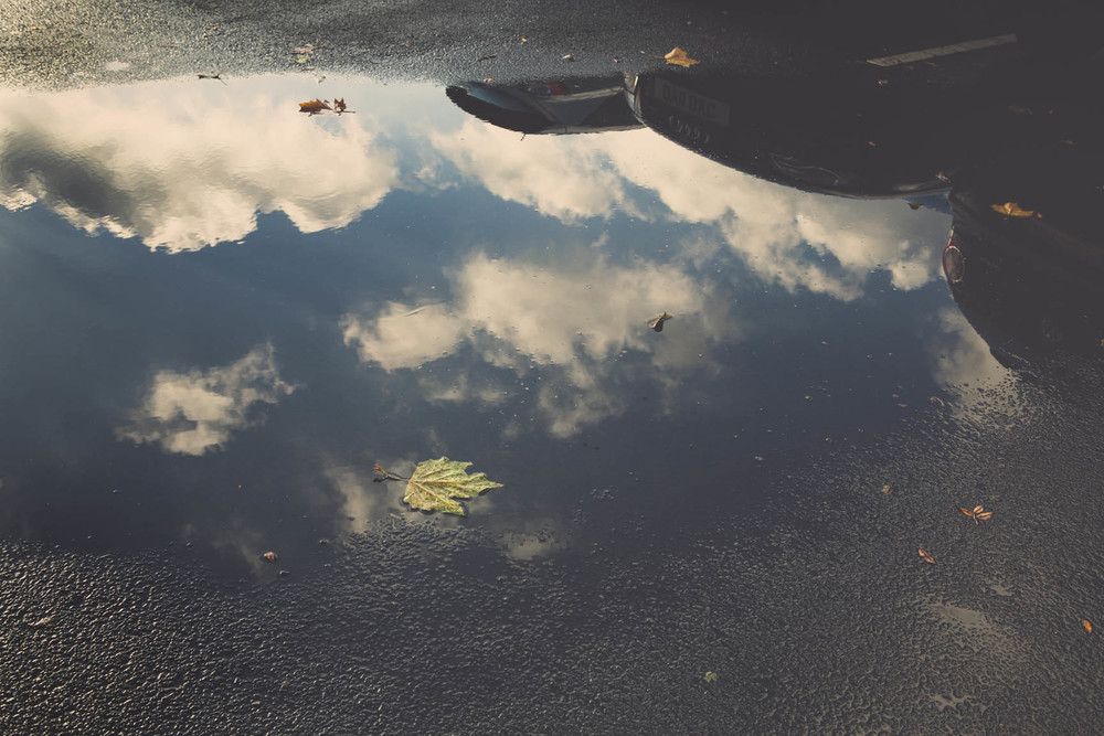 Puddle by Me & I Photography