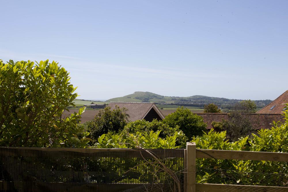 Dairyman's View