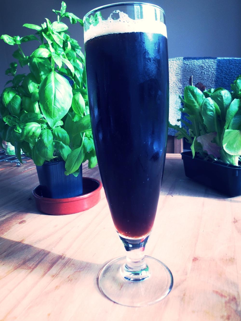 Dark, Malty lager, Fine bubbles, Light tan head - check  Arty vegetation - check