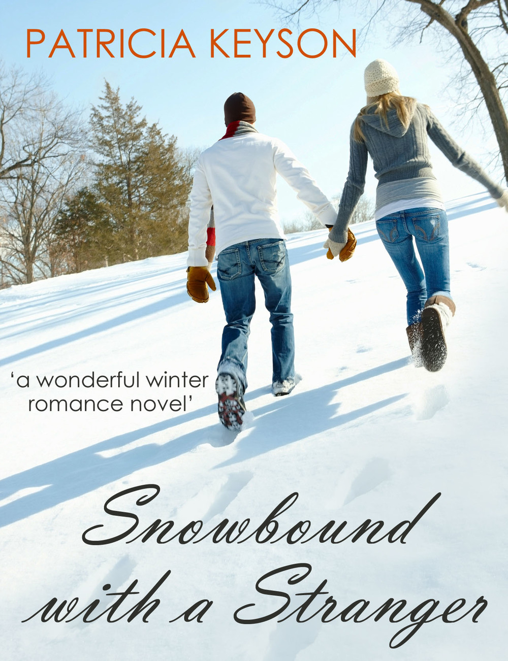 snowbound cover copy.jpg