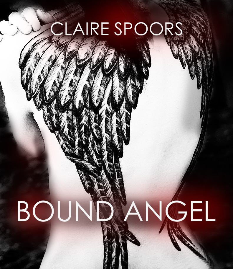 angel wings cover copy.jpg