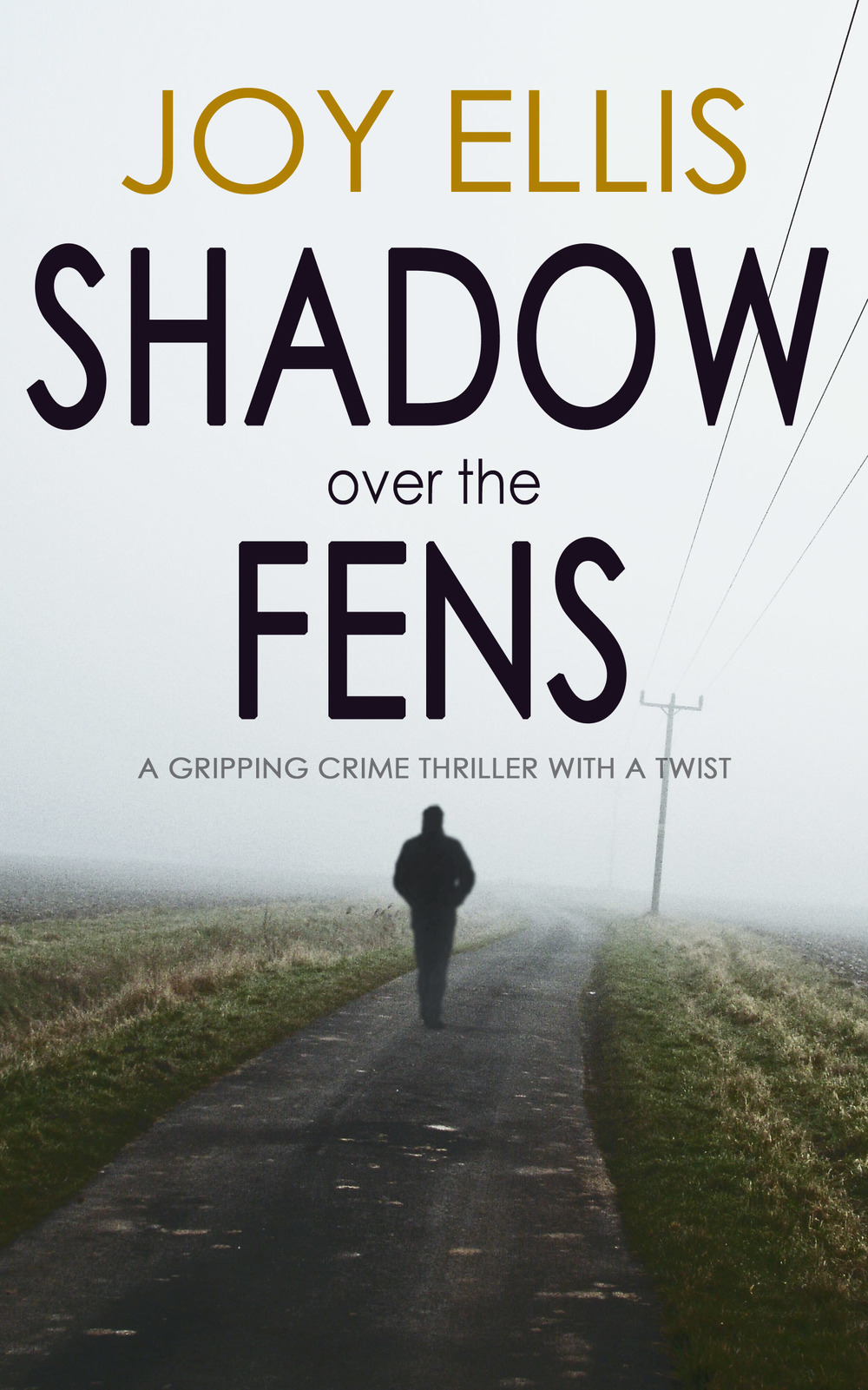 shadow over the fens man NEW telegraph pole.jpg