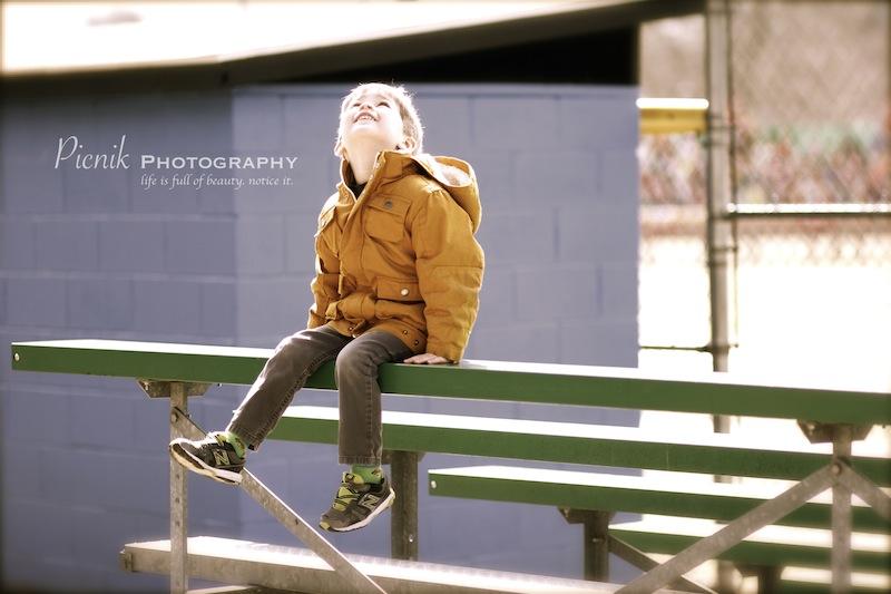 picnik photography