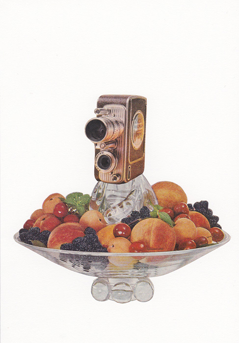 fruit by the millimeter