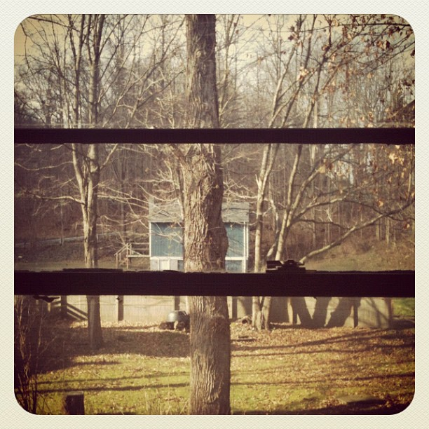 View from my bedroom. (Taken with Instagram at Wassaic, NY)