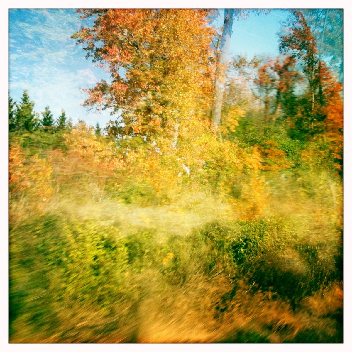 Fall (x2)