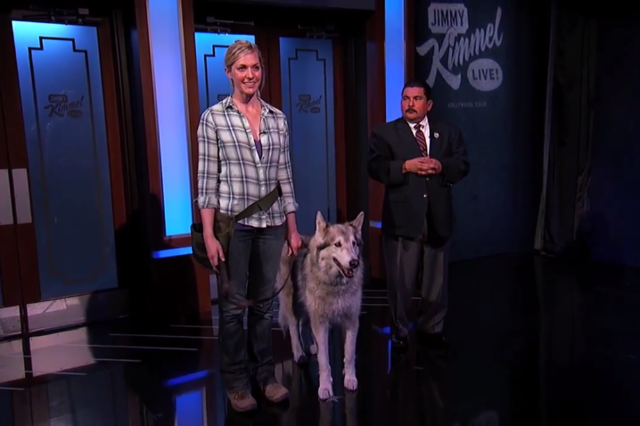 thisistheverge: Watch this: Jimmy Kimmel hoaxes Sochi Olympics with wolf in hotel News networks went wild when US Olympic luger Kate Hansen posted a video of what appeared to be a wolf walking around her Sochi hotel Wednesday night, but it turns out that the video is actually yet another elaborate prank by none other than Jimmy Kimmel. Wow. Well played.
