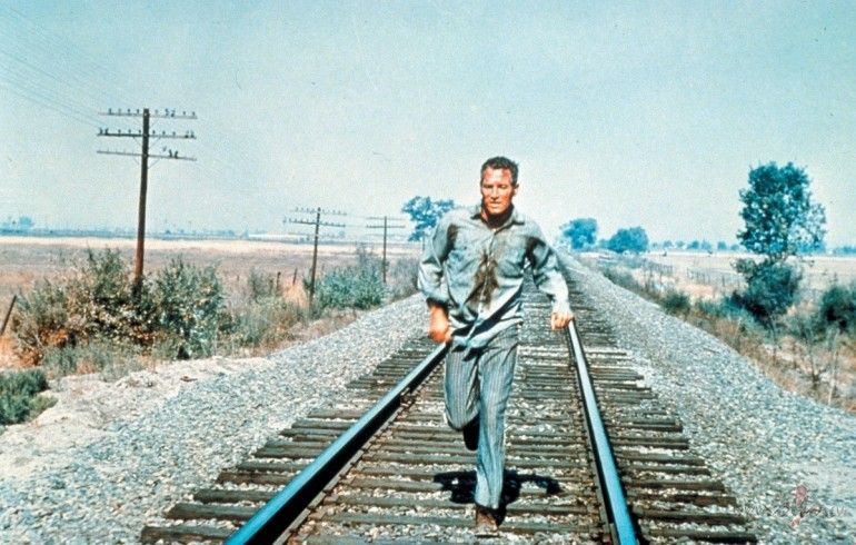 stn-to-stn: COOL HAND LUKE Stuart Rosenberg, 1967 » From In Transit In Film, our series of movie stills of people in motion. Something about eggs…