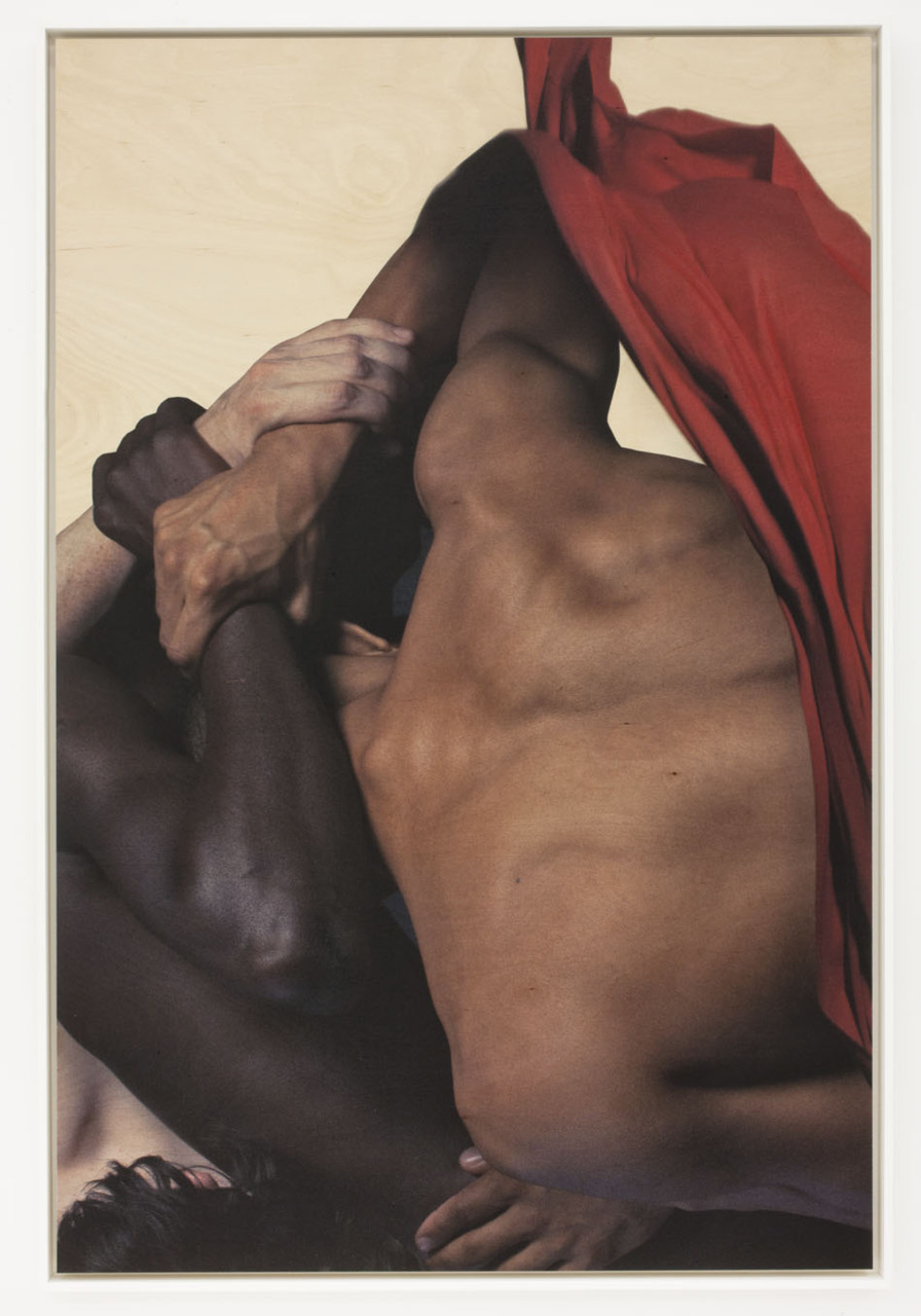 optimismasculturalrebellion: Open Force - Matthew Stone - 2011 REALLY like this composition and color world.