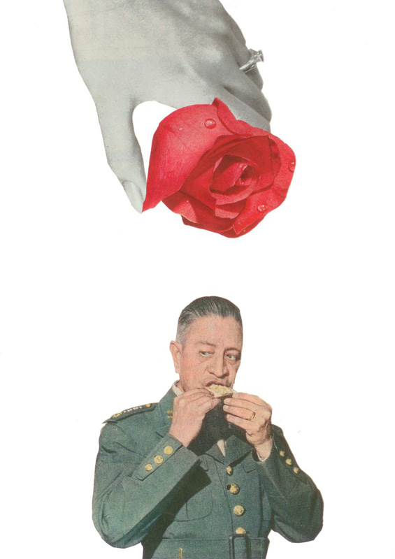 "a rose for the general  collage  7""x5""  2011 from the ""consumables"" series"