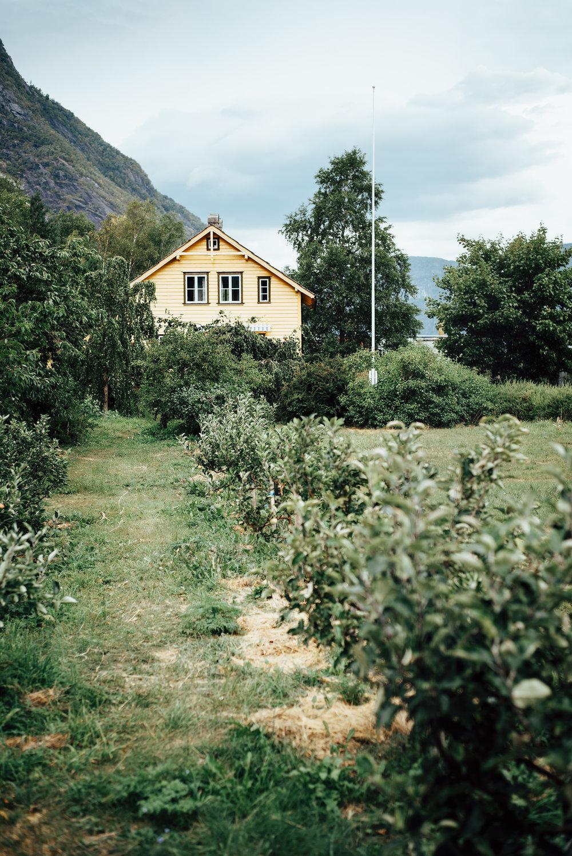 Eidfjord17_3.jpg