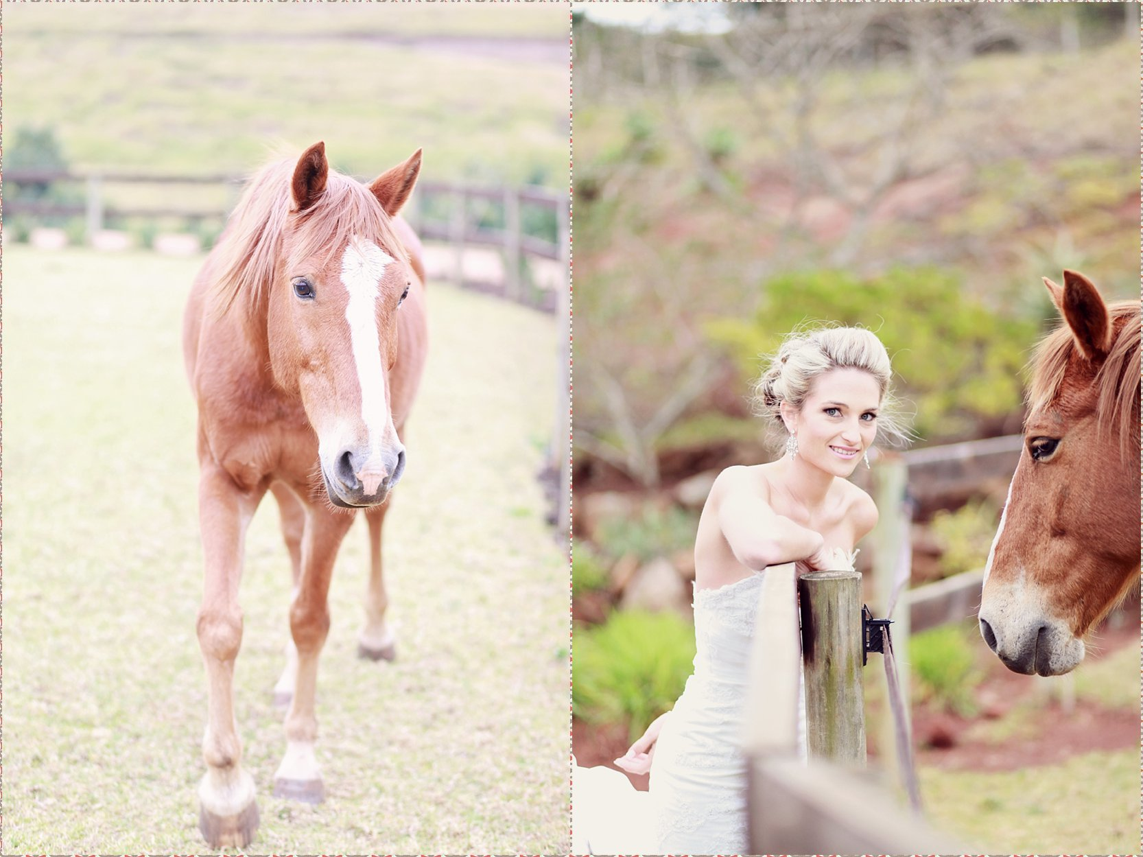 FIONA CLAIR PHOTOGRAPHY De Jagers 2013_0978